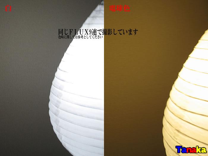 画像3: 【明るさ・色合い確認用】提灯LED化 夏祭り用